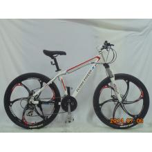Bicicleta de montaña de aleación de magnesio de una sola pieza (FP-MTB-A073)