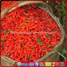Горячая продажа Китай органический сушеные ягоды Годжи