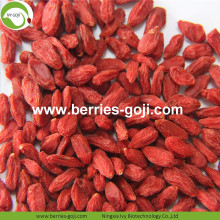 Super Grade Natural Fruit Premium Común Goji Berry