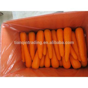 Chinesischer Karottenlieferant