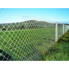 China Supplier Chain Link Fence