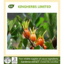 Extracto de Gardenia Geniposido 10% ~ 98% HPLC