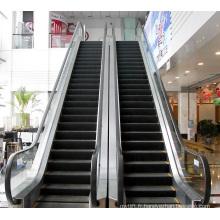 Aksen Escalator à l'acier inoxydable Step Commercial Type