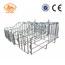 Galvaniserad Stainless Steel Tube Gestation Pig Pen Design