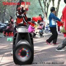 Активная акустическая система для караоке с дистанционным управлением, Bluetooth, FM