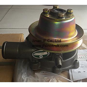 Z00220100 6QAJ-1307010 860112196 Bomba de Água Yuchai Liugong