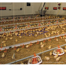 Height Adjustable Automatic Auger Feed System for Poultry