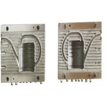 Hochwertige Kunststoff Blasformen für Flasche (PJAB007)