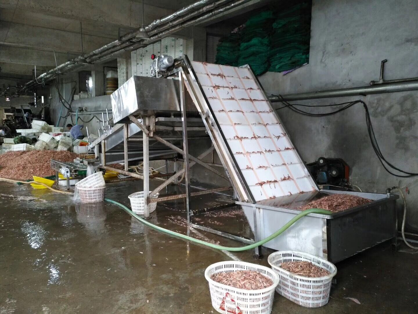 shrimp peeling machine