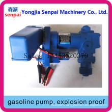 Dyb50/75-DC12b Gasoline Pump, Explosion Proof