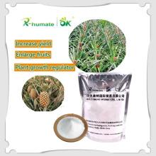 X-Humate Iba Rooting Hormones Iba Agrochemical
