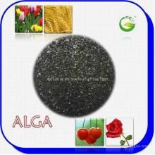 Extracto de algas orgánicas Fertilizante orgánico (ALGA WS100)