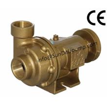 """(PC8000-2 """") Bombas de água marinha do mar cru bronze"""