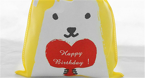 Birthday Party Ideas Bags