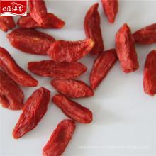 Оптовая премиум ягоды годжи