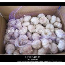 2018 erster Grad chinesischen normalen weißen Knoblauch Fabrik Großhandelspreis