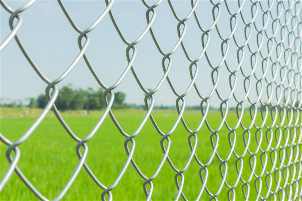 Galvanised-Chain-Link-Fence