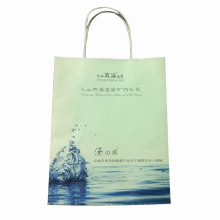 Saco de compras de presente de papel impresso de cor (SW405)