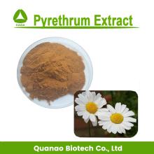 Extrait de pyrèthre 10:1 pyréthrine 25% pour insecticide
