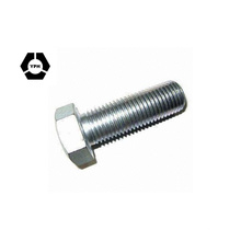 Standard Size High Quality HDG Bolt Hot DIP Galvanized Hex Bolt DIN933