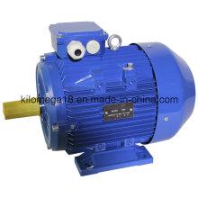 Серии y2 3-фазных асинхронных электродвигателей для промышленности с CE