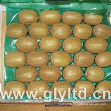 Qualidade exportada Chinês Frutas frescas Kiwi Verde