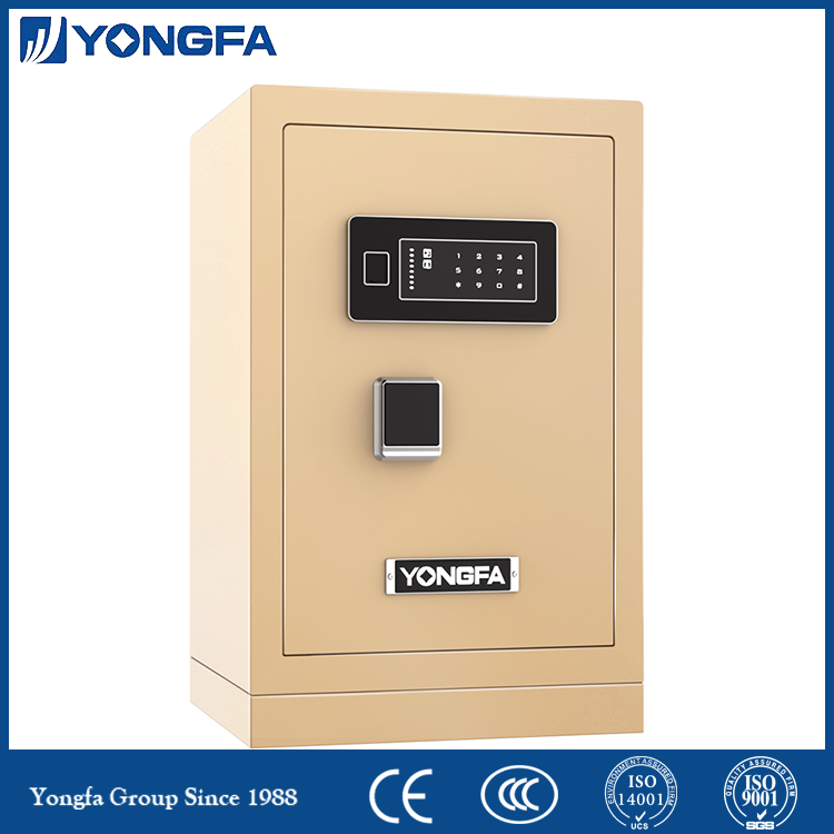 Home Digital Password Safe Deposit Box
