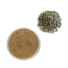 Polvo de fruta de sauzgatillo a granel de alta calidad