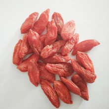 Ningxia Conventioneel Lycium Barbarum Goji Berry Gedroogd
