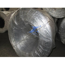 Galvanized Iron Wire (electro and hot dipped galvanized)