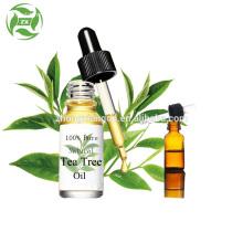 Organic Therapeutic Grade Essential Oil Gift Sets