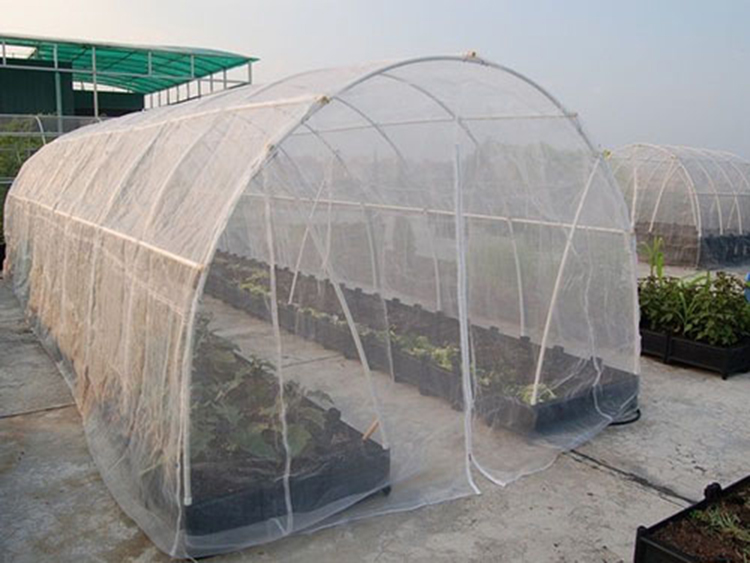 Anti-insect Screen for Greenhouse