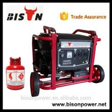 BISON (CHINA) Alibaba China 6kw 6 kva 1/3 Phasen elektrischer LPG Generator
