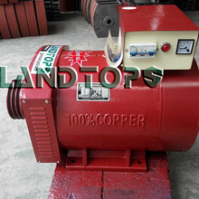 30KW STC Three Phase High Power Alternator Price