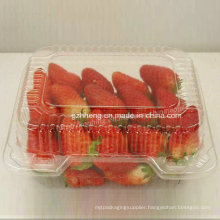 Eco-friendly Health Clear Plastic PP Box for fruit (food packaging)