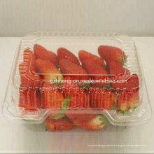 Экологически чистая пластиковая коробка для фруктов (упаковка для пищевых продуктов)