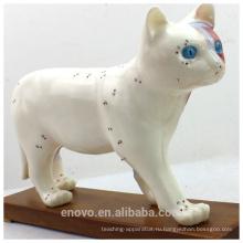 Оптовая ветеринарная модели 12004 анатомические модели Кот модель Акупунктура