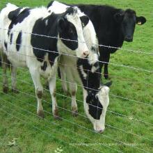 Clôture de champ de garde de ferme de bétail bon marché
