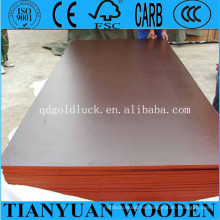 4 * 8ft Linyi Combi Core Black Film Faced Plywood