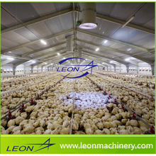 Leon series automatic broiler feeding system chicken feeding system