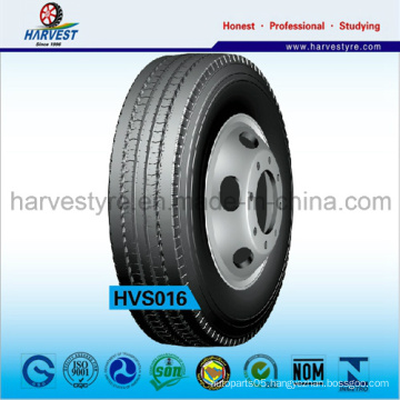 Middle East Best Popular Tyre (12.00R24)
