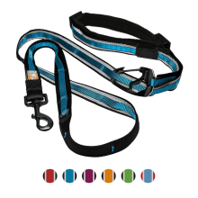 6 в 1 Hands Free Dog Leash