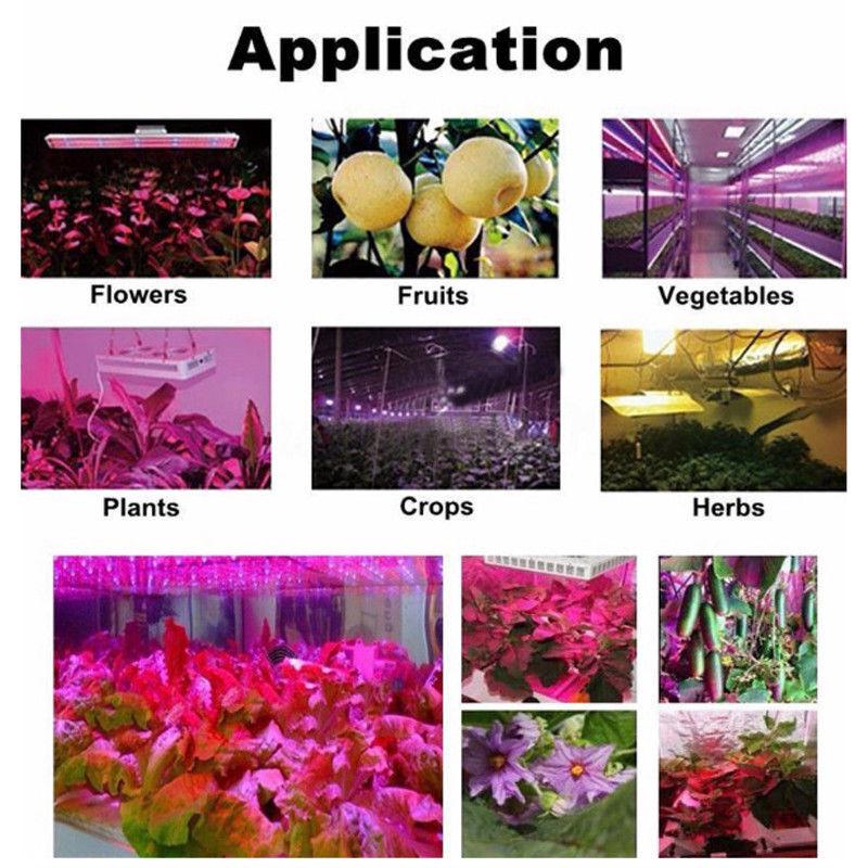 LED Grow Lights for Medical Herb