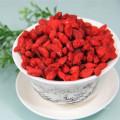 Chino de alta calidad wolfberry
