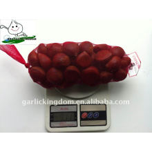 40-60 saco de malha 1kg X10 Casca fresca