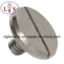 Ss 304 Flat Head Slotted Bolt with High Quality