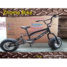 Bicicletas/Kid′s crianças gordas a bicicleta/bicicleta/gordo Beach Bike
