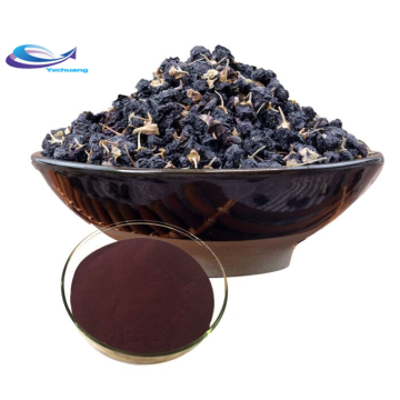 100% nature Ingrédient alimentaire Baie de goji noire naturelle