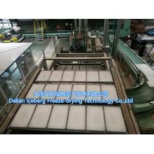Paraffin-Produktionslinie mit hoher Kapazität