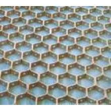tortoise net